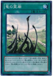 card100013328_1